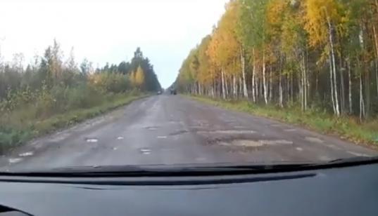 Вологжанин пожаловался губернатору на разбитую дорогу к детским лагерям в Череповецком районе