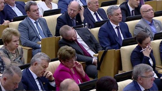 Всех депутатов Госдумы наградят правительственными наградами