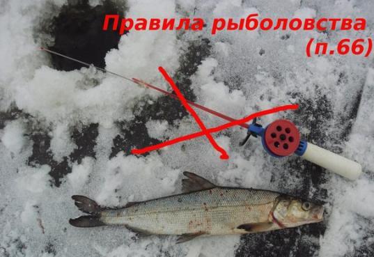 отмена запрета на ловлю рыбы