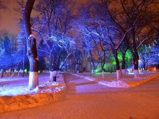 Семьи из Вологды могут выиграть приз за фото со своими гостями в зимние каникулы