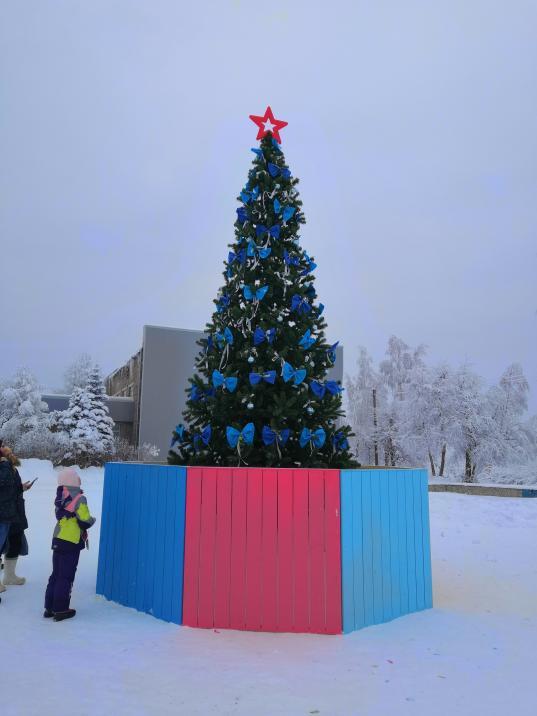 Жители Климовского в Череповецком районе сами купили для поселка новогоднюю елку