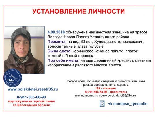 Женщину, которую нашли на трассе в Устюженском районе, забрал родственник