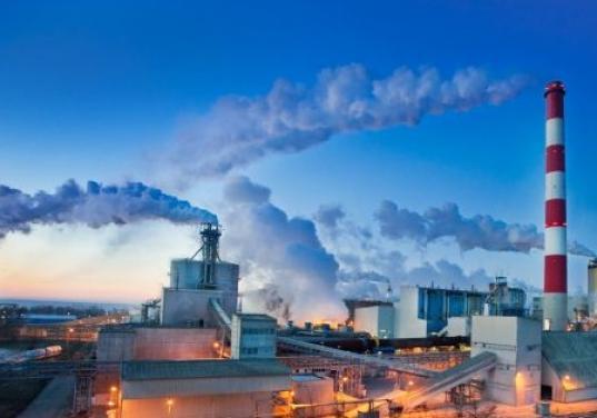 Участок Рыбинского водохранилища, где собираются строить целлюлозный комбинат, оказался самым загрязненным