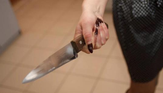 В Вологде пенсионерка во время ссоры убила 29-летнего сына